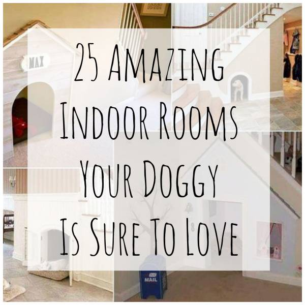doggyrooms