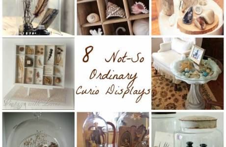 8 Not-So Ordinary Curio Displays