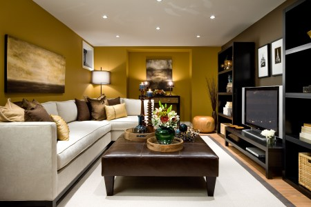 02 earthly pleres small living room design homebnc