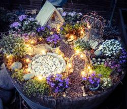 Small Of Fairy Garden Container Ideas