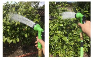 The Hose That Grows