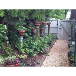 Small Crop Of Small Backyard Fence