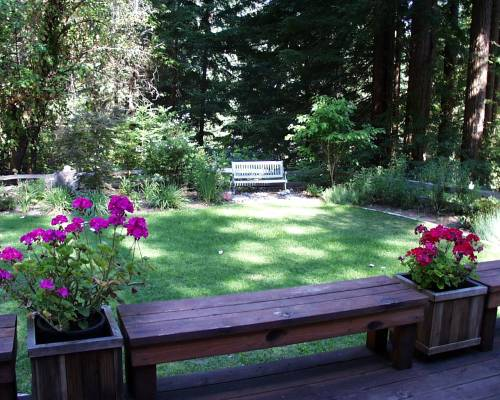 Medium Of Garden Backyard Designs