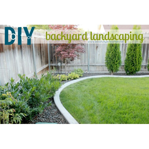 Medium Crop Of Backyard Ideas Images