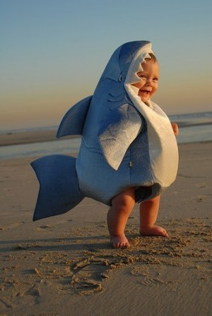 shark costume Its finally here.....