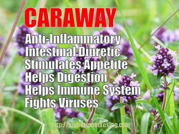 caraway health benefits meme