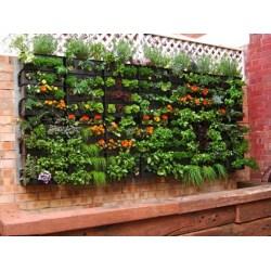 Small Crop Of Lattice Garden Wall
