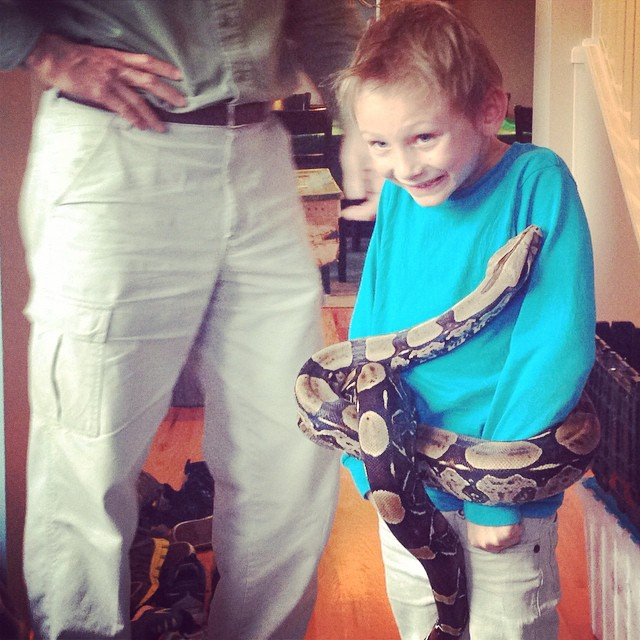 Biggie getting stomach strangled by a snake this afternoon! He's…