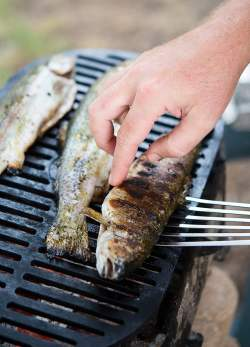 Fascinating Grilled Trout On Grill Grilled Trout Recipe How To Grill A Whole Trout Or Kokanee Grilled Trout Recipes Dill Grilled Sea Trout Recipes