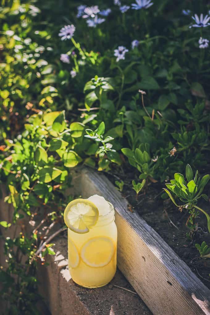 Frozen Sparkling Lemonade-17