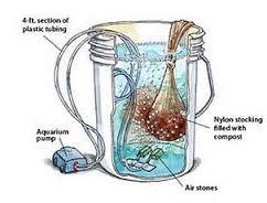 organic compost tea