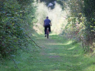 One of the many cycle paths within the Estate