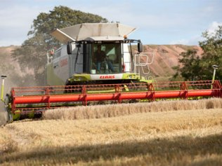 There are over 4,500 acres of arable farming at Hopetoun