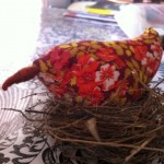 This little bird sat on my desk and demanded I write about her.