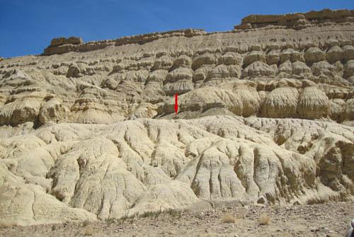 Exposures of fluvial and lacustrine sediments of the Zanda Basin, where the skeleton of the Zanda horse was excavated