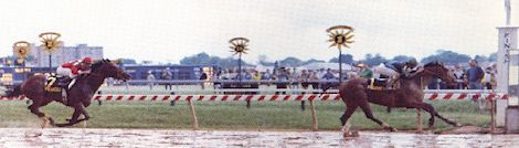 Deputed Testamony winning the Preakness in 1983.