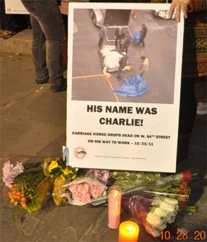 A sign in honour of Charlie.