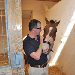 Dr Hurcombe says staff at Ohio State are looking forward to the day Northstar can go home.