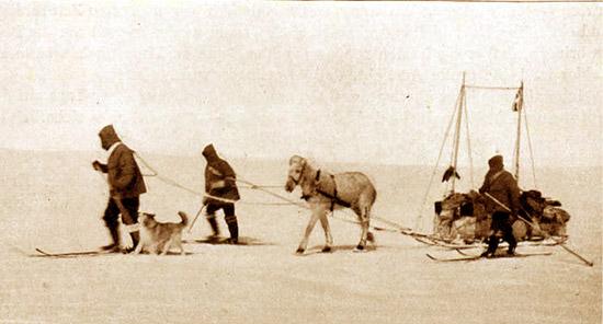 Johann Koch and his team in Greenland.