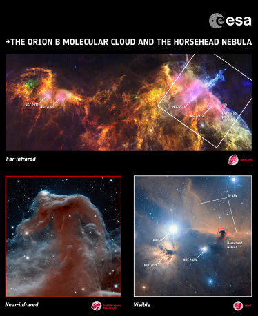 Orion-B_Horsehead_composition