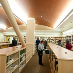 Browsers check out the newly opened arabian collection at the University Library at Cal Poly Pomona.