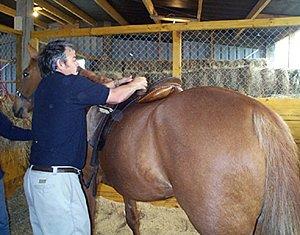 saddle-fitting-andre-bubear2
