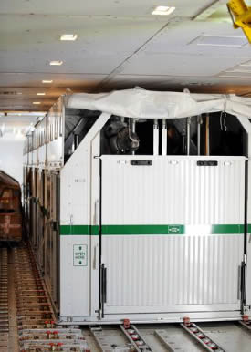 Olympic eventer Gandalf in his flight stall, bound for Hong Kong.