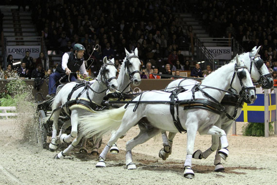 Dutch Driver IJstbrand Chardon and his four-in-hand team on their way to victory in the first competition of the FEI World Cup Driving Final 2014 at Bordeaux (FRA).