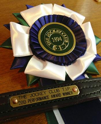 TIP-prize-rosette1
