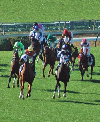 racing-grayson