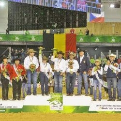 Team USA won Reining gold at the Alltech FEI World Equestrian Games in Normandy. Belgium took silver followed by Austria with bronze.