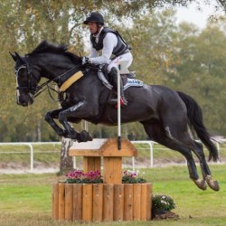 Michael Jung keeps his cool, and Pau 4* lead