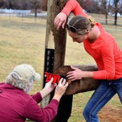 Boost for $160K eventing project to restart frangible fence study