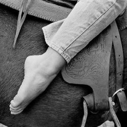 """Why horse riding feels so good: It's all about the """"Earth Spirit"""""""