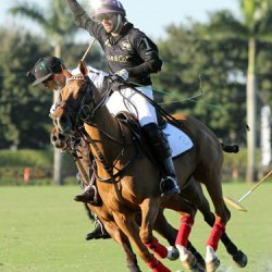 Charity hit out for polo players in support of injured comrades
