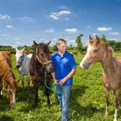 Research into potential probiotic wormer in horses scores federal cash