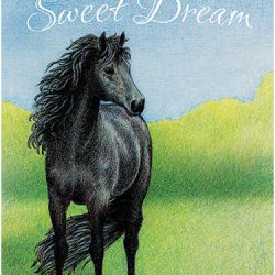 Selah's Sweet Dream, by Susan Count
