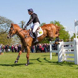 Young artists urged to create Badminton Horse Trials jump design