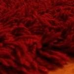 Limpieza de alfombras de lana con HOST