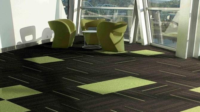 Servicio de limpieza de moquetas, alfombras, colchones, tapicerías y suelos