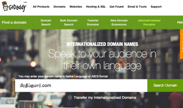 GoDaddy Internationalized Domain Names