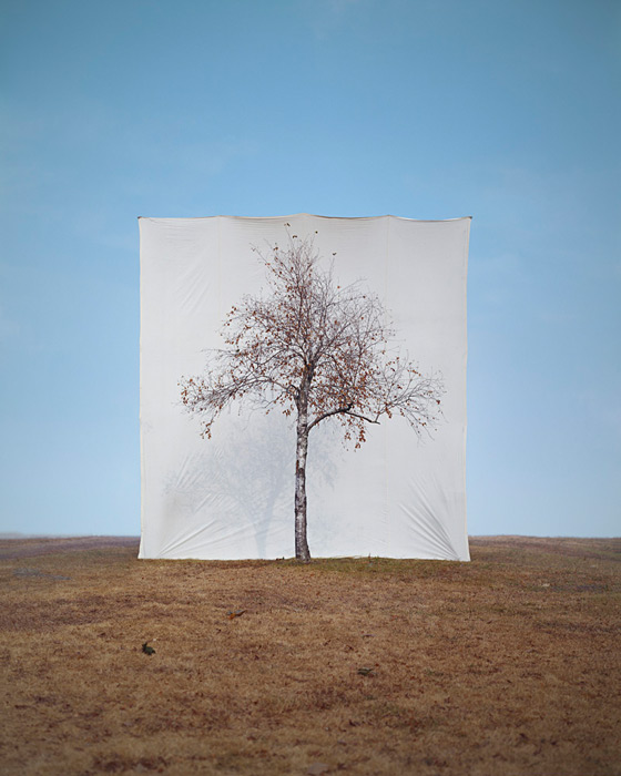 Myoung Ho Lee