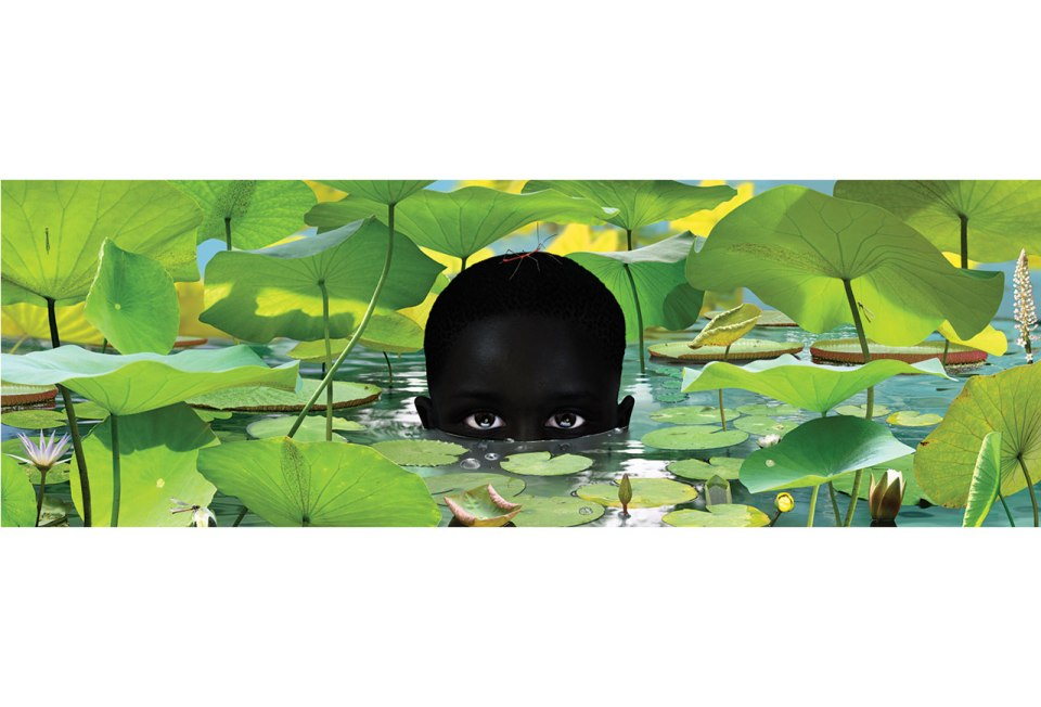 Ruud van Empel, World #17, 2006, Cibachrome, dibond, plexiglas 40 x 118 inches (101.6 x 299.7 cm)