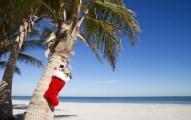 planear Vacaciones