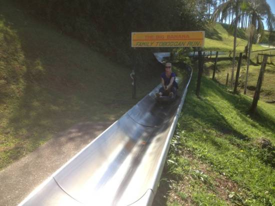 The end of the toboggan ride