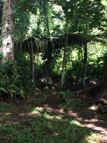 Some shelter where the Cascade singers can sit and cook their food.  They have a little fire going.  Amazing how relaxed the 'open fire' laws are compared with here in Oz.