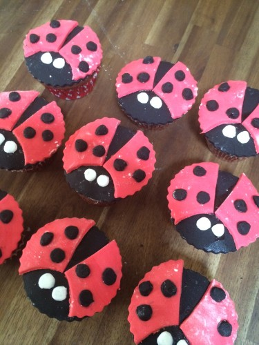 Ladybirds with their wings, spots and eyes