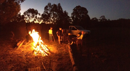 All the excitement of a bonfire