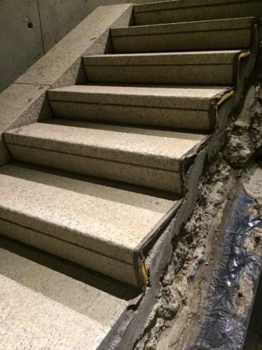 The Survivor's Staircase