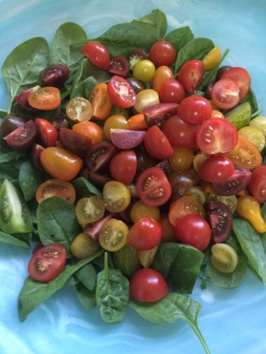 The heirloom tomato salad minus the basil and before I added the haloumi